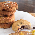 Chocolate Chip, Coconut, & Raisin Cookies [Grain Free, Gluten Free, Dairy Free, Nut free]