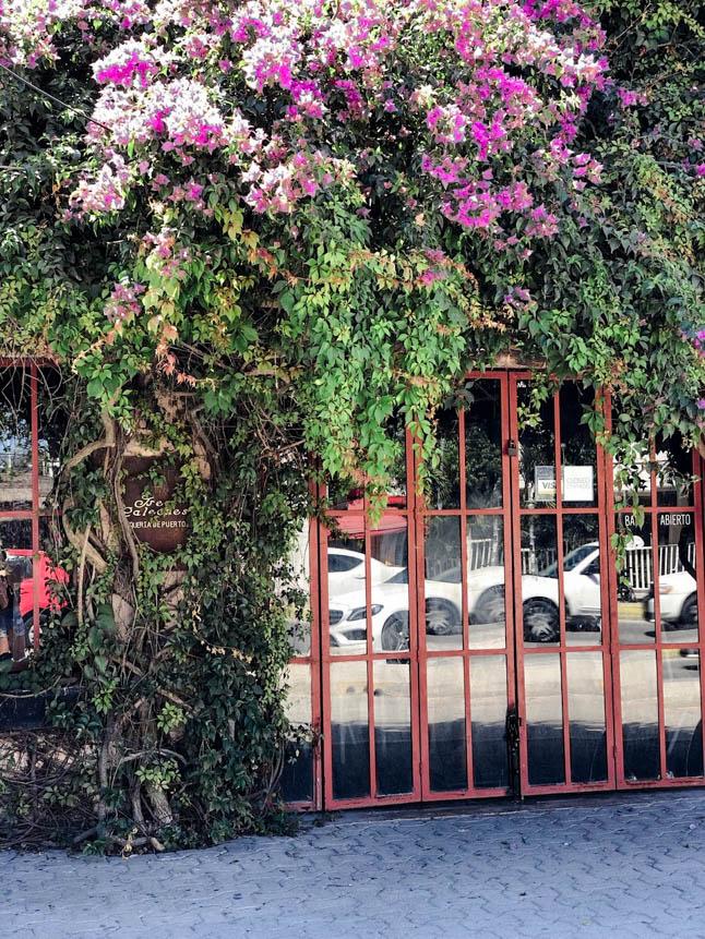 Our Travel Guide To Tulum | adoubledose.com
